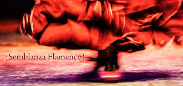 Flyer Fin de Fiesta 2014