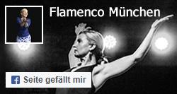 Facebook Seite Flamenco München
